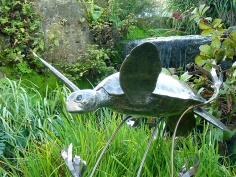 19b Turtles Swimming Through Kelp by Piers Mason