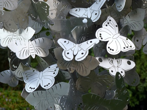 36b Moths by Sophie Marsham