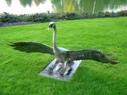 39 Swan by Piers Mason