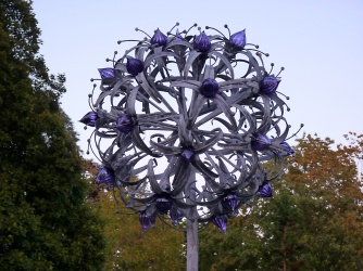 60a Stargazer Allium by Jenny Pickford