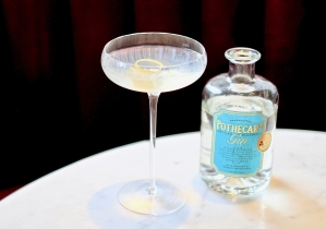 Pothecary Gin - Classic Martini pic 2 11.35.55