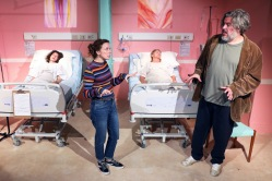 A Funny Thing Happened On The Way To The Gynecologic Oncology Unit by Halley Feiffer. Finborough Theatre, London.